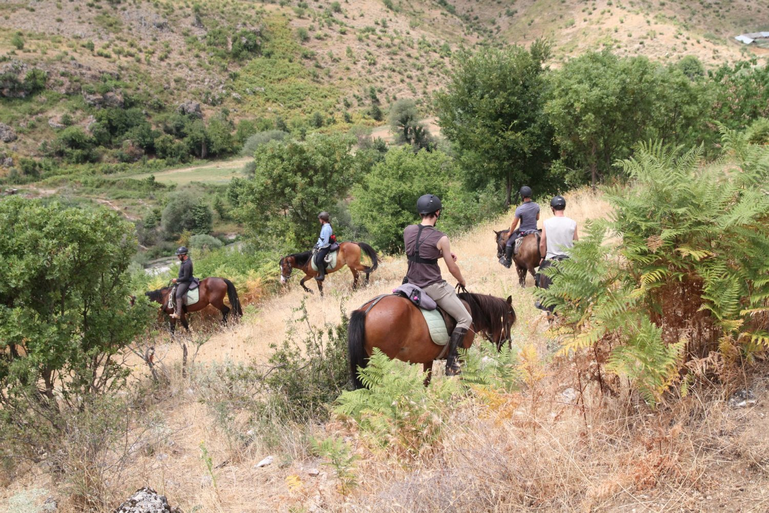 Caravan Horse Riding Albania, placed in Southern Albania, Gjirokastra Historical Town - Horse Trail Albania, Horse Riding Trails in Albania