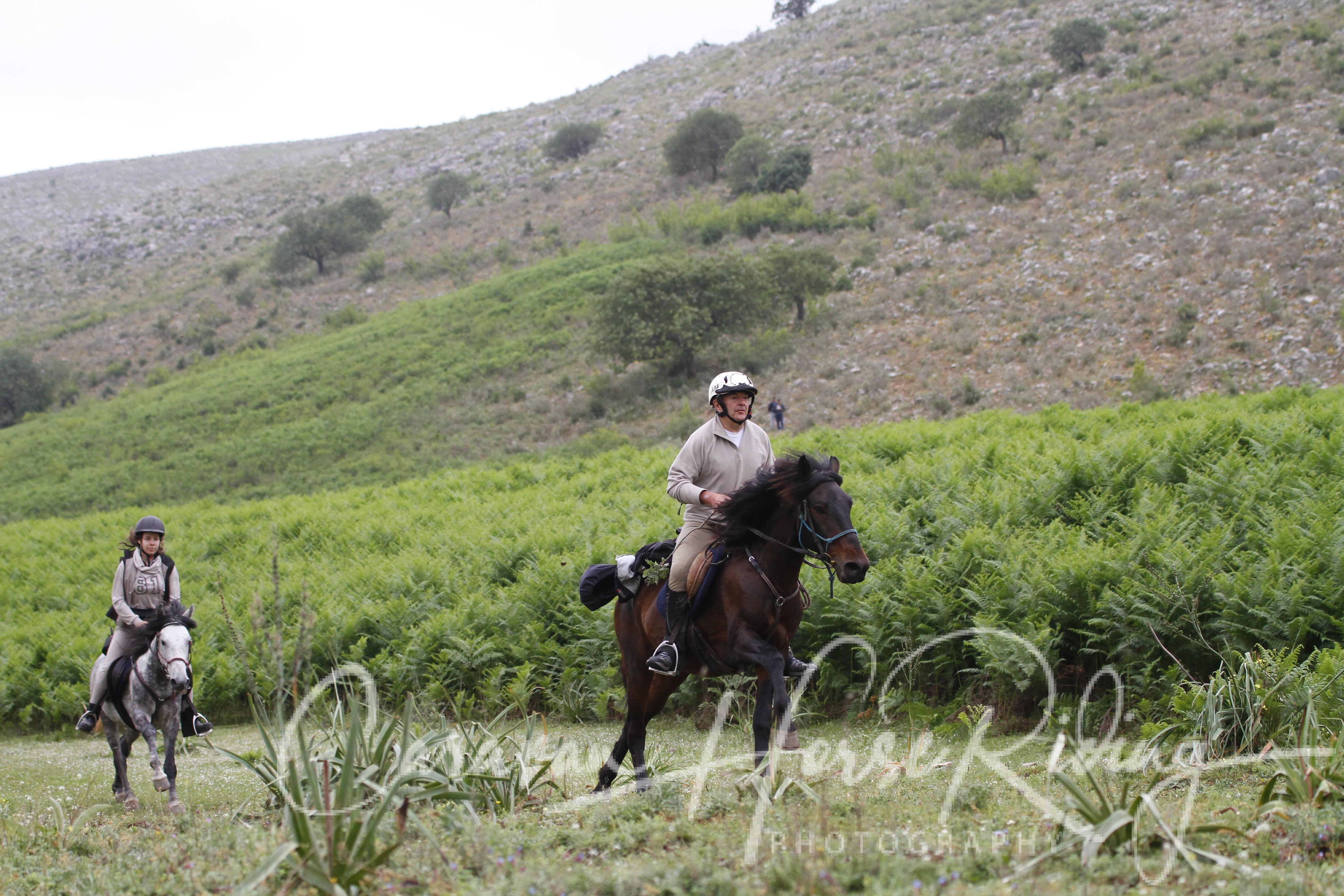 Gallery - Horse Riding Albania